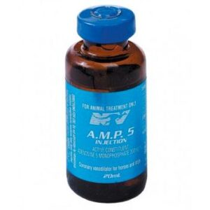 AMP-5-Injection