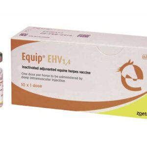 Equip EHV Injection